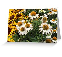 Bright Summer Flowers Greeting Card