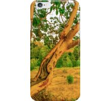 Madrone iPhone Case/Skin