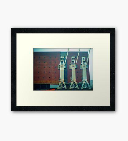 cranes in the fog of hamburg Framed Print