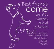 BEST FRIENDS COME IN ALL SHAPES AND SIZES BUT THE BEST ONES COMES WITH SHORT LEGS AND LONG TORSOS by garry niccol