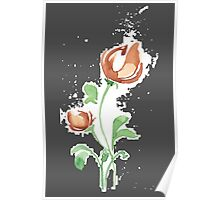 flowers. roses. flower happiness Poster