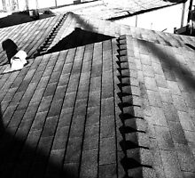 Roof Angles by amdrecun