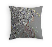 Coral Etch Throw Pillow