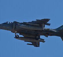 AV8B Harrier empty by Henry Plumley