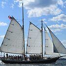 Vintage sailing ship near Newport RI photography by Vitaliy Gonikman