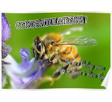 Bugs On Flowers Macro Poster