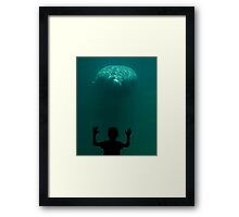 Curiousity Framed Print