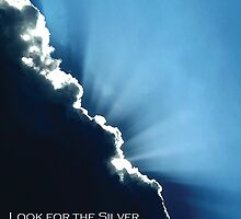look for the silver. by rabs