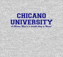 Chicano University Unisex T-Shirt
