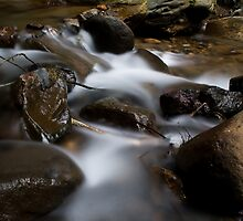 mossed rock on the waterfall flow  by cuni