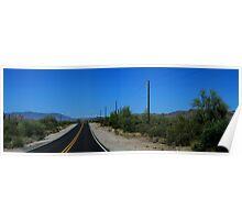 Scottsdale Desert road Poster