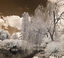 Botanic IR by Craig Hender