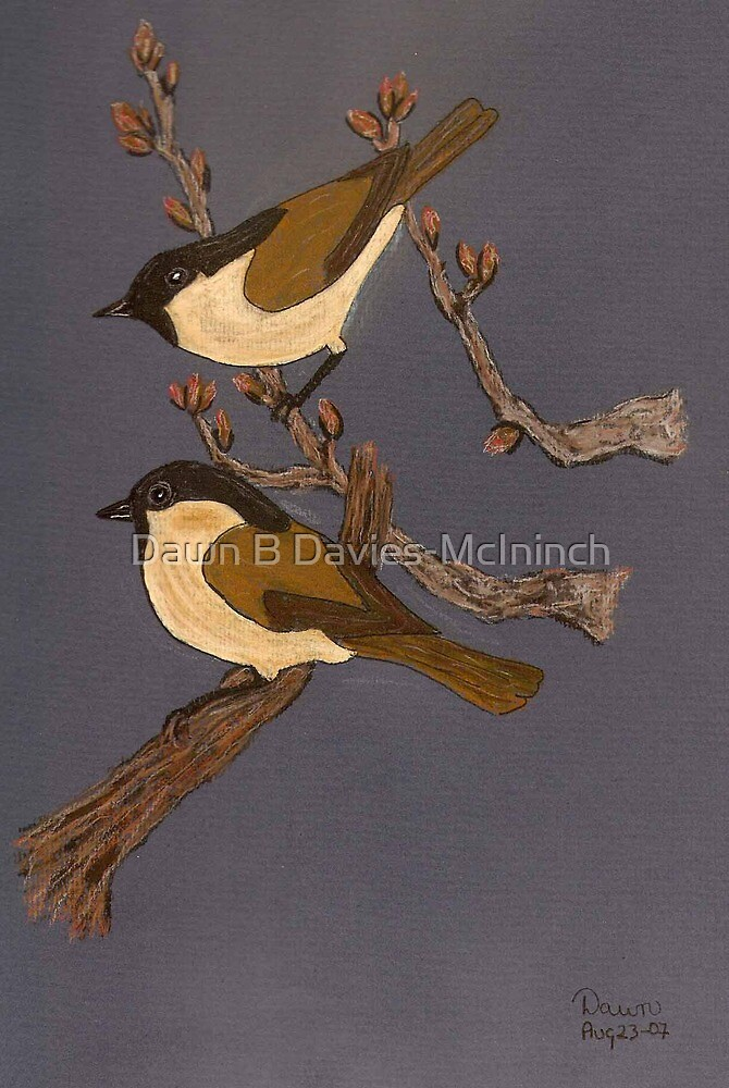 Great Willow Tits by Dawn B Davies-McIninch
