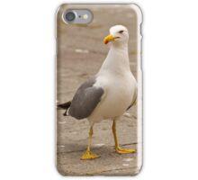 Pretty Gull iPhone Case/Skin