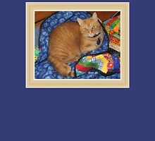 Dropped Quilt ~ Cat Opportunity! Womens Fitted T-Shirt