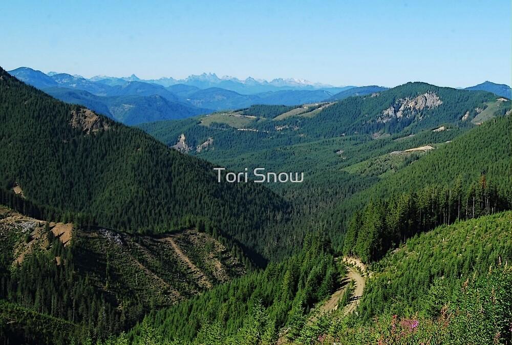 Long Distance Vista by Tori Snow
