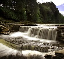 Aysgarth Falls by Paul McGuire
