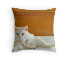 Rather Silly Oscar Throw Pillow