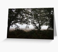 Misty Dawn in the Woods Greeting Card