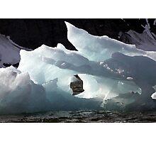 Icebergs Ahead Photographic Print