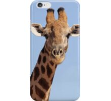 Kalahari Giraffe iPhone Case/Skin