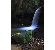 Moss and Flow Photographic Print
