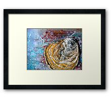 Shell Abstract Framed Print