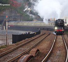 LNER 60163 'Tornado' at Dawlish by Rorymacve