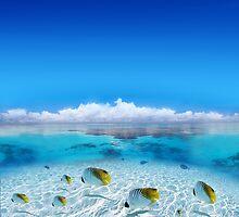 Post Card from Polynesian   by Brünø Beach .