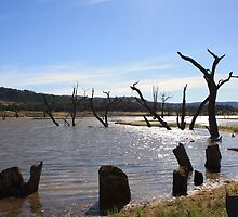 Lake Eildon by cmaloney
