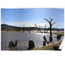 Lake Eildon Poster