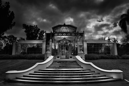 The Palm House by Craig Hender