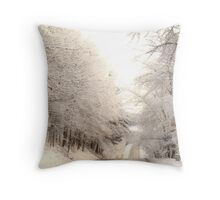 Long Cold Road Throw Pillow