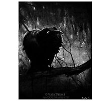 Screams From Shadows Photographic Print