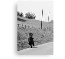 OnePhotoPerDay Series: 226 by L. Canvas Print