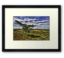 """""""Forest View"""" - New Forest National Park Hampshire England Framed Print"""