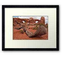 Arches 2 Framed Print