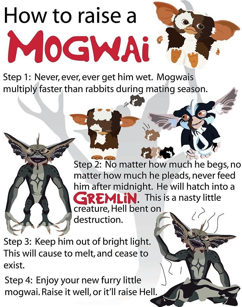 How to Raise a Mogwai by Toon-Alchemist