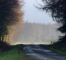 Mystic journey by Julie Short