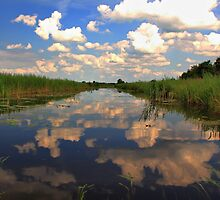 Natures Mirror by Jo Nijenhuis