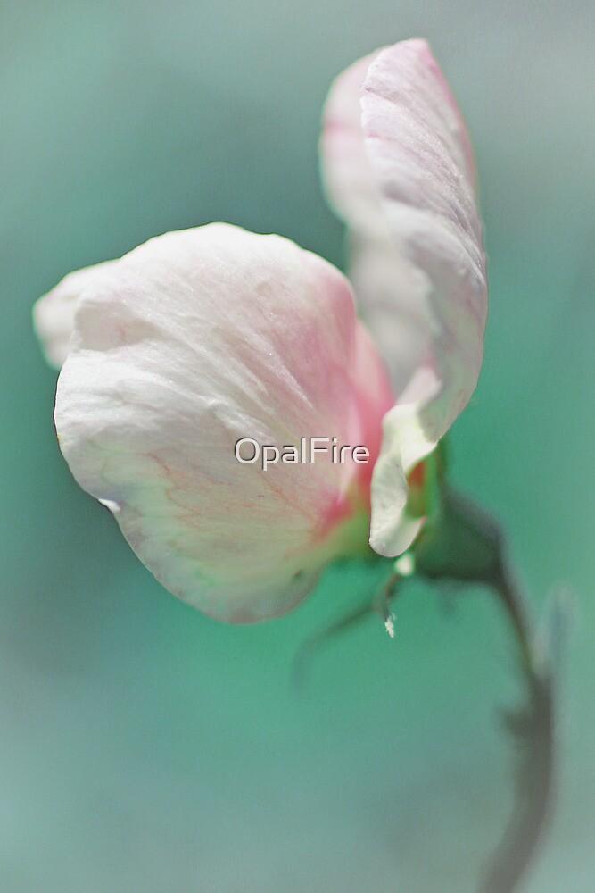 Sweet Pea by OpalFire