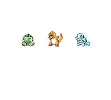 Starter Pokemons by blukey