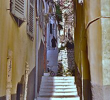 Corfu Back Lane by David Davies