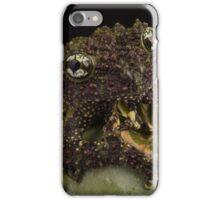 Vietnamese Mossy Frog iPhone Case/Skin