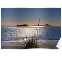 Abersoch bay with grasses Poster