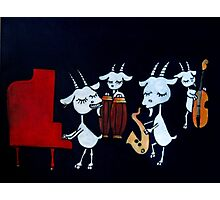 4 Beats 4 Goats Photographic Print