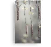 tranquility | 02 Canvas Print