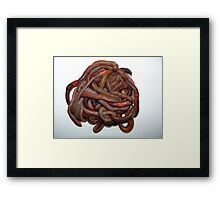 Pile O Worms Framed Print