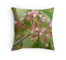 Pretty Pink Berries of Summer Throw Pillow