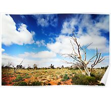 Rock Trees, Outback South Australia Poster